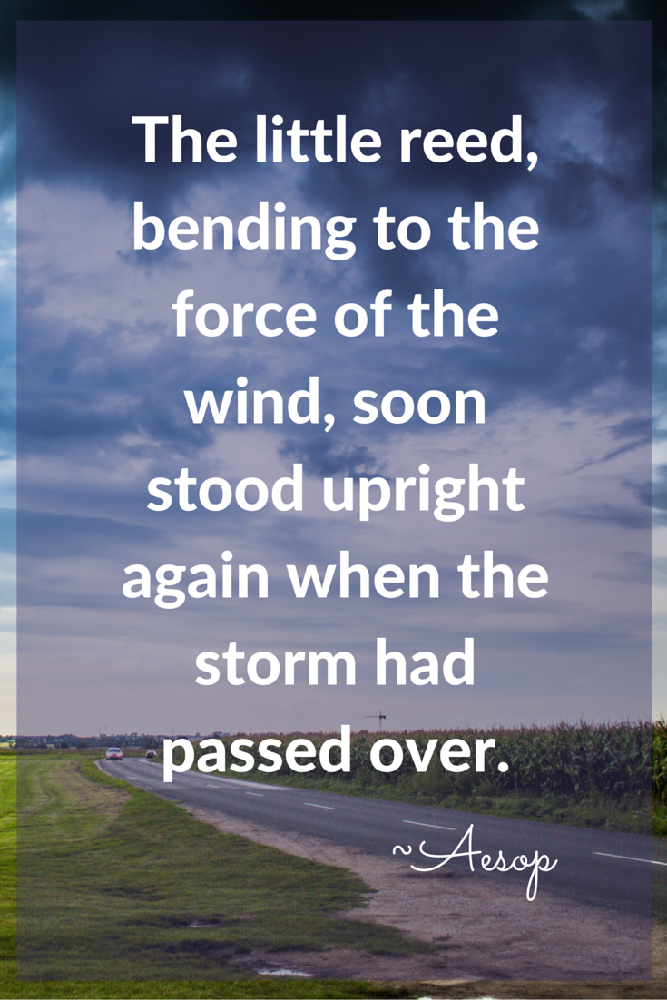 storm of life Aesop quote