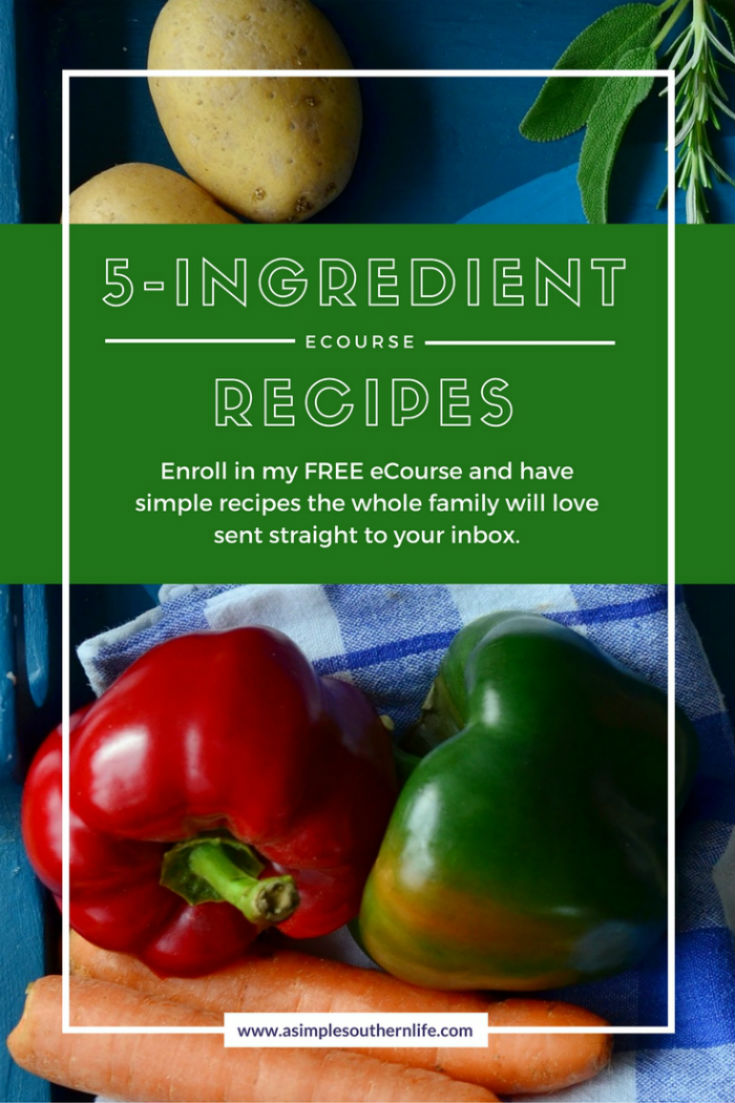 5 Ingredient Recipes FREE eCourse